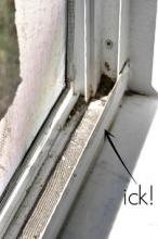 Icky-Screen-Door.jpg